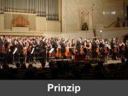 Amadeus: Prinzip